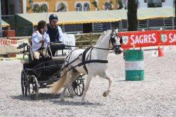 Jogos Equestres Regionais dos Açores