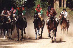 Corridas de cavalos com apostas podem chegar a Portugal em 2018
