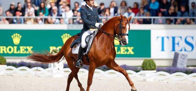 Real Federación de Hípica Española confirma 4 atletas seleccionados