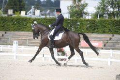 CDI3* Hartpury: Luís Principe e Le Docteur em 4º lugar