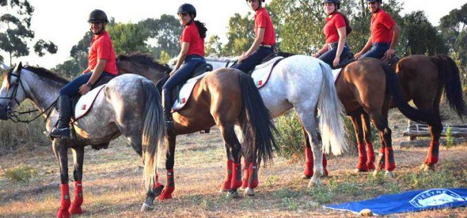 Mundial TREC 2018: Os 5 cavalos portugueses passam no vet-check em Bracciano