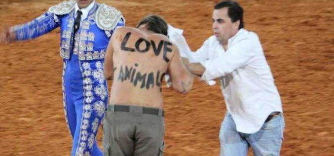 Ativistas antitouradas invadem arena e são agredidos em Albufeira