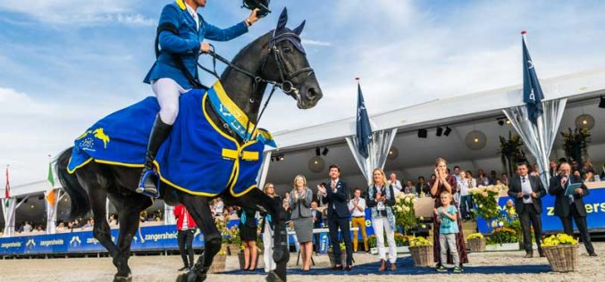 Irish, Belgian and Oldenburg Studbooks reign supreme at Lanaken