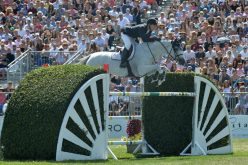 McLain Ward's Win in the $300,000 Hampton Classic Grand Prix