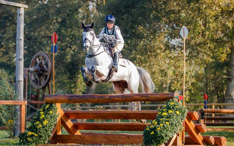 French-bred Cristal Fontaine tops 6-year-olds, Brandenburg mare Asha P wins 7-year-old category