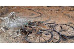 Carruagem  que remonta à Idade do Ferro descoberta em Yorkshire