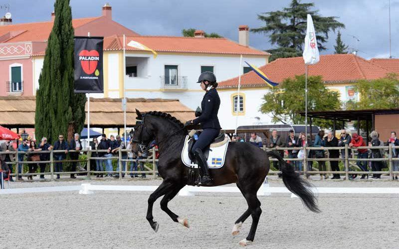 Golegã: Começou a Feira Nacional do Cavalo