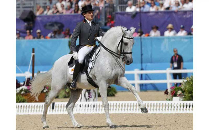 Equilíbrio e Impulsão em Equitação