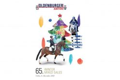 Winter Collection online – 37 exquisite dressage & show jumpers