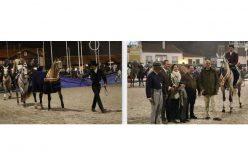 Criadores do Cavalo de Raça Luso-Árabe reúnem-se para iniciativa inédita
