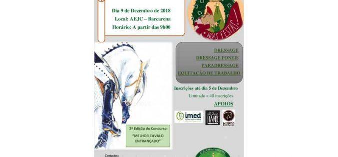 """""""Equitação para Todos"""" e Mercado de Natal Solidário na Vila Cardiga"""