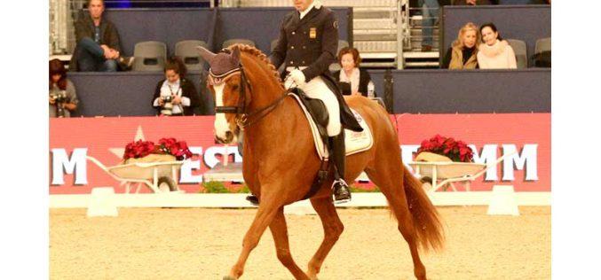 CDI-W Madrid: Cavalos Lusitanos brilham no Grande Prémio (VÍDEO)