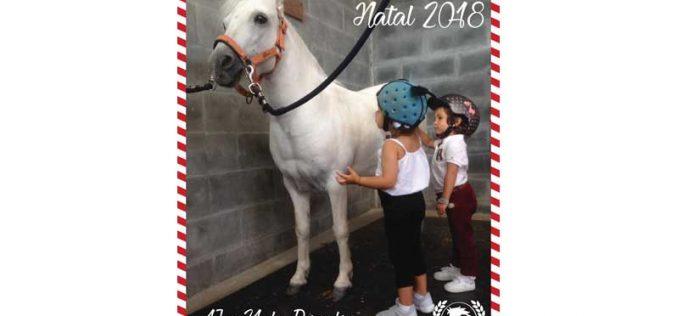 Campos de Férias de Natal no Pony Club do Porto