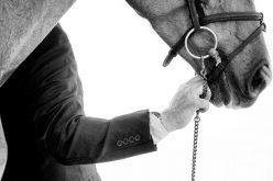 FEP: Registo Inicial de Cavalos