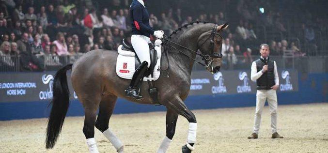 Olympia Horse Show: Charlotte Dujardin não vai montar Mount St. John Freestyle (VÍDEO)