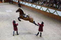 Escola Portuguesa de Arte Equestre: Não perca a primeira Gala de 2019