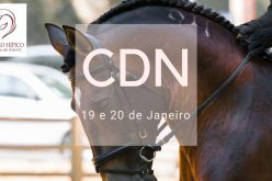 Cerca de 40 conjuntos inscritos no CDN do CHCE