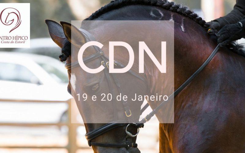 Cerca de 40 conjuntos inscritos no CDN do CHCE