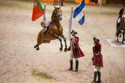 Arte equestre em exibição em Bordéus (VÌDEO)