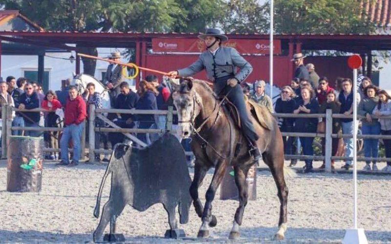 Resultados da 1ª Jornada do CRCET de Equitação de Trabalho – Golegã