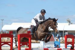 """Amazing"" Laura Renwick, repete vitória na II Young Horses European Cup 2019"