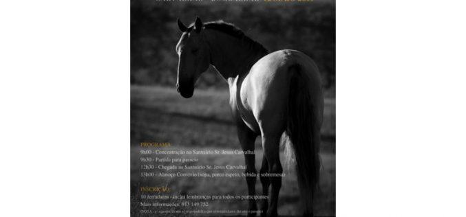 VI Passeio Equestre do Carvalhal – 12 de Maio