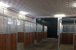 ELVAS: Ampliação do Centro de Animação e Formação Equestre