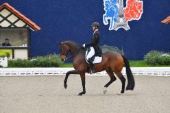 The second Grand Prix goes to Sönke Rothenberger