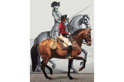 EPAE evoca os Tratados Portugueses de Arte Equestre