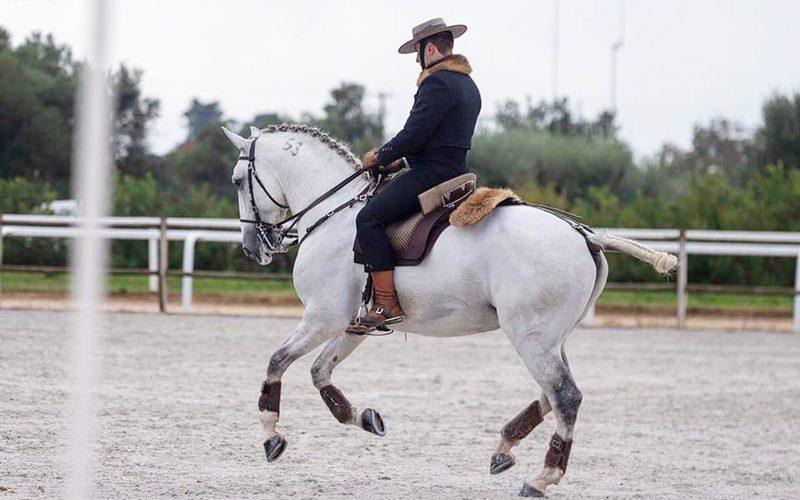 Salvaterra acolheu jornada do Campeonato Regional Centro de Equitação de Trabalho