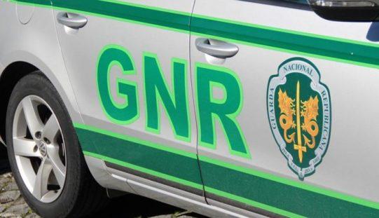 GNR de Pinhal Novo recupera material de equitação furtado