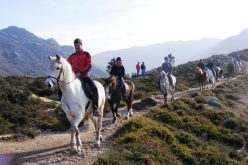 Rota Equestre Napoleónica vai ligar zona de Cáceres à Guarda