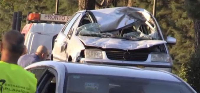 Condutora morre após colisão com cavalo em Beja
