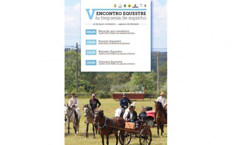V Encontro Equestre da Freguesia de Espinho