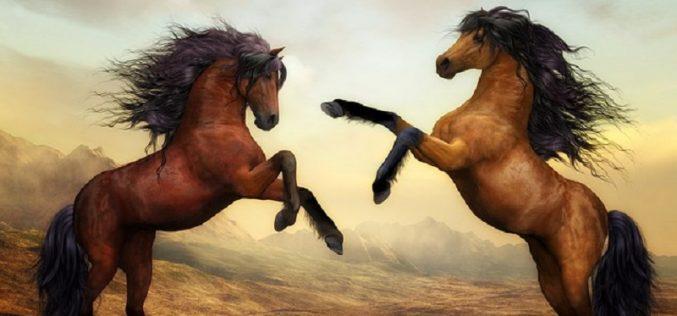 O cavalo em filmes e jogos de computador