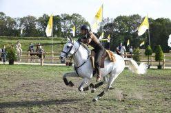 Marco Boavista vence Internacional de Equitação de Trabalho na Holanda