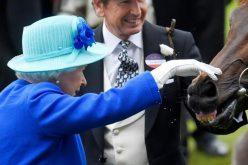Rainha Isabel soma 8,68 milhões de euros à sua fortuna com corridas de cavalos