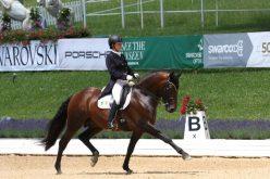 CDIO5* Aachen: 4 Cavalos Lusitanos inscritos