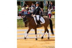 4ª Jornada do Troféu Dressage Póneis