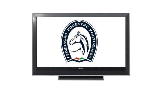 Federação Equestre Portuguesa vai ter canal de televisão