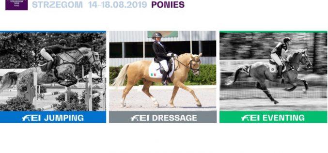 Campeonato da Europa de Póneis em Julho na Polónia