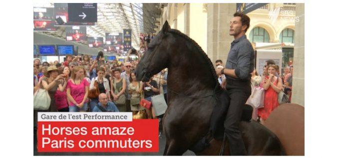 "Cavalos na ""Gare de l'Est"" de Paris (VÍDEO)"