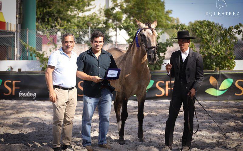 Edição de 2019 da Samora Equestre foi um sucesso