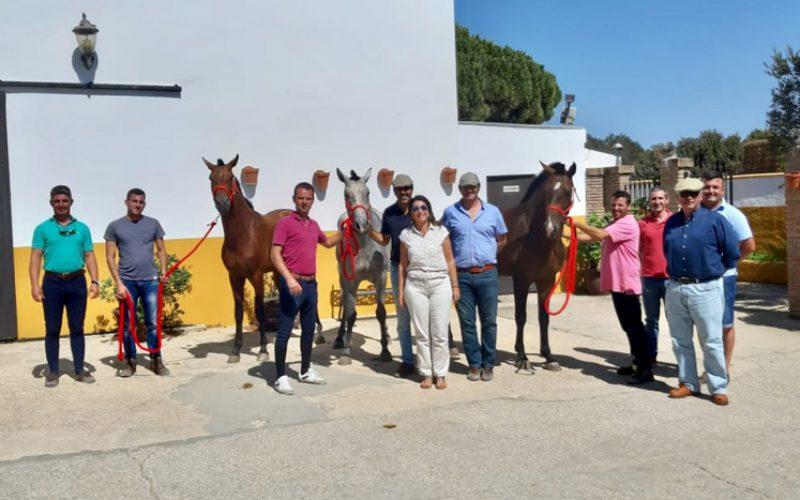 ACRLA na expansão do Cavalo Luso-Árabe