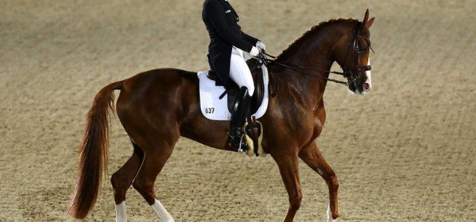 Isabell Werth conquista a Medalha de Ouro no GP Especial (VÍDEO)