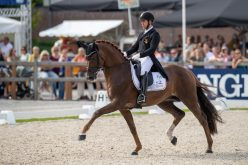 Fabulous sport at FEI WBFSH Dressage Championships (VIDEO)