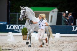 Campeonato da Europa de Dressage 2019: Cavalos passam na 1ª inspecção veterinária