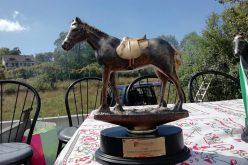 62 Participantes na corrida de cavalos em Aboim da Nóbrega