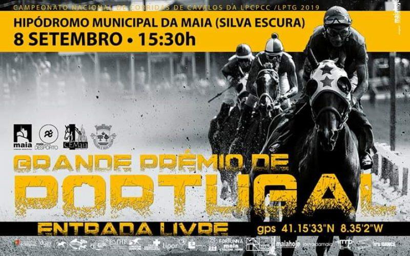 Quem vencerá o GP de Portugal?