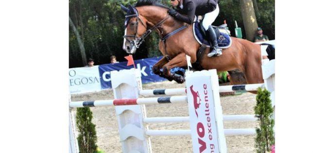 CSI2* Bonheiden: Henrique Drumond conquista quarto lugar no Grande Prémio na Bélgica